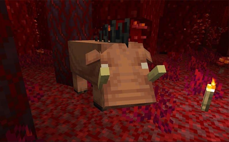 Minecraft 1.16.4 Java Edition