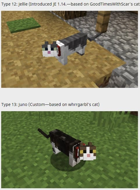 Not enough cats minecraft 1 12 2 - Minecraft City